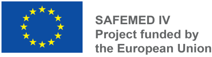 Safemed IV logo